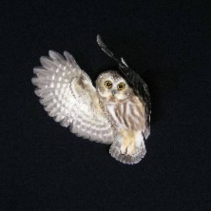 Owl In A Night's Work: Evening Field Session